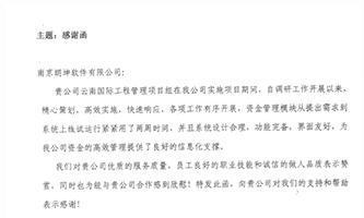 中电投云南国际电力投资有限公司